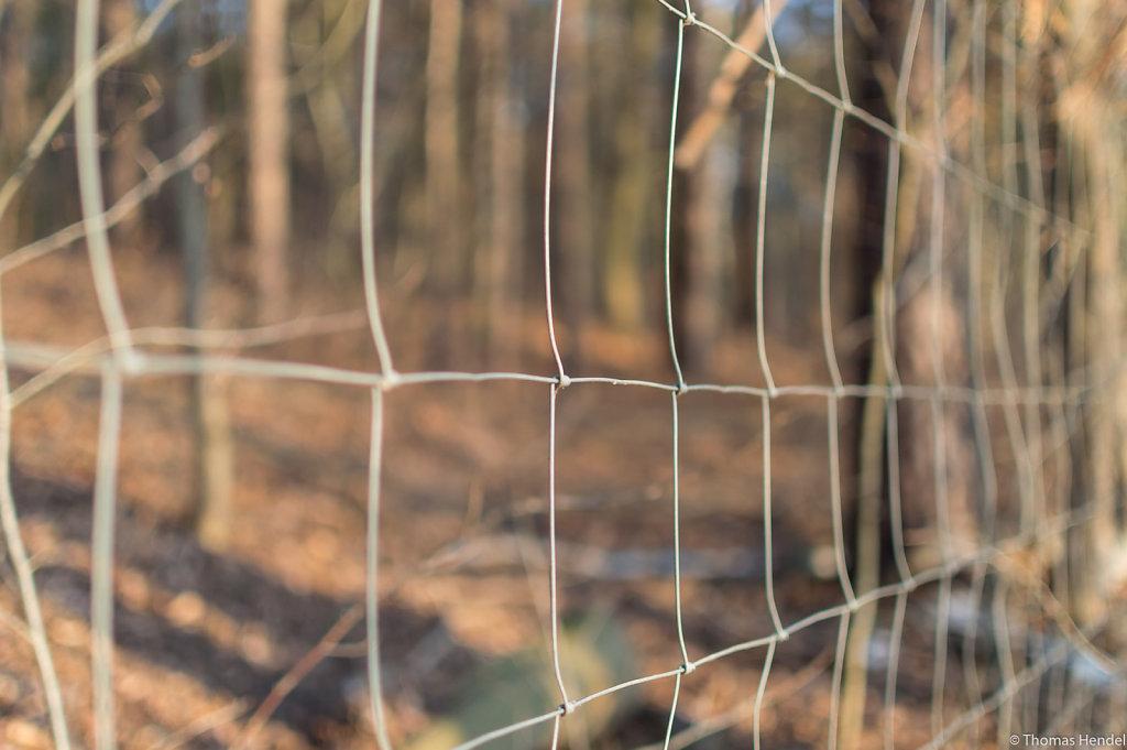 Fenced.