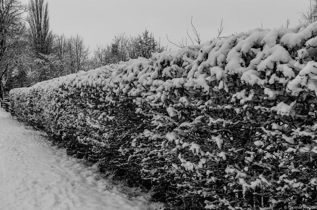 A snowy wall.